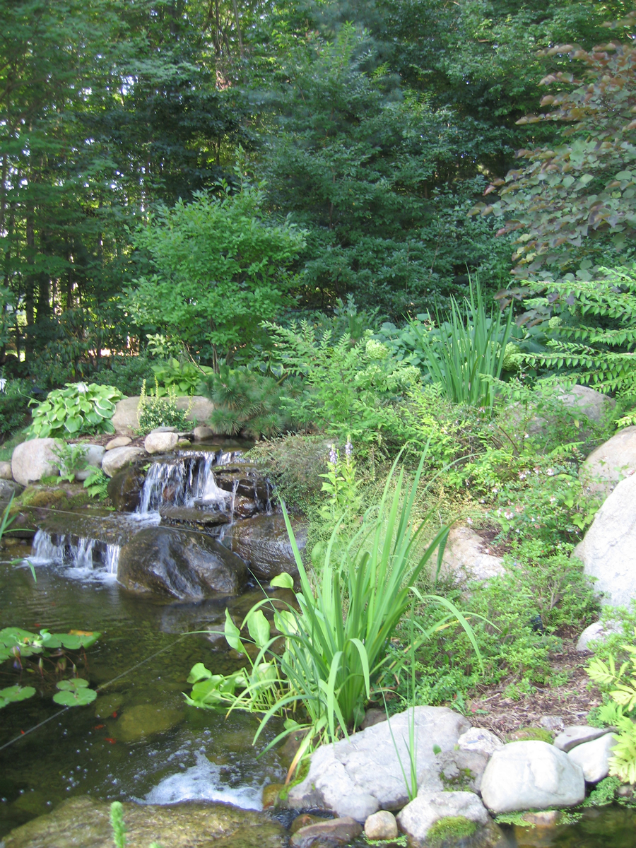 Running water and soft plantings make a restful combination
